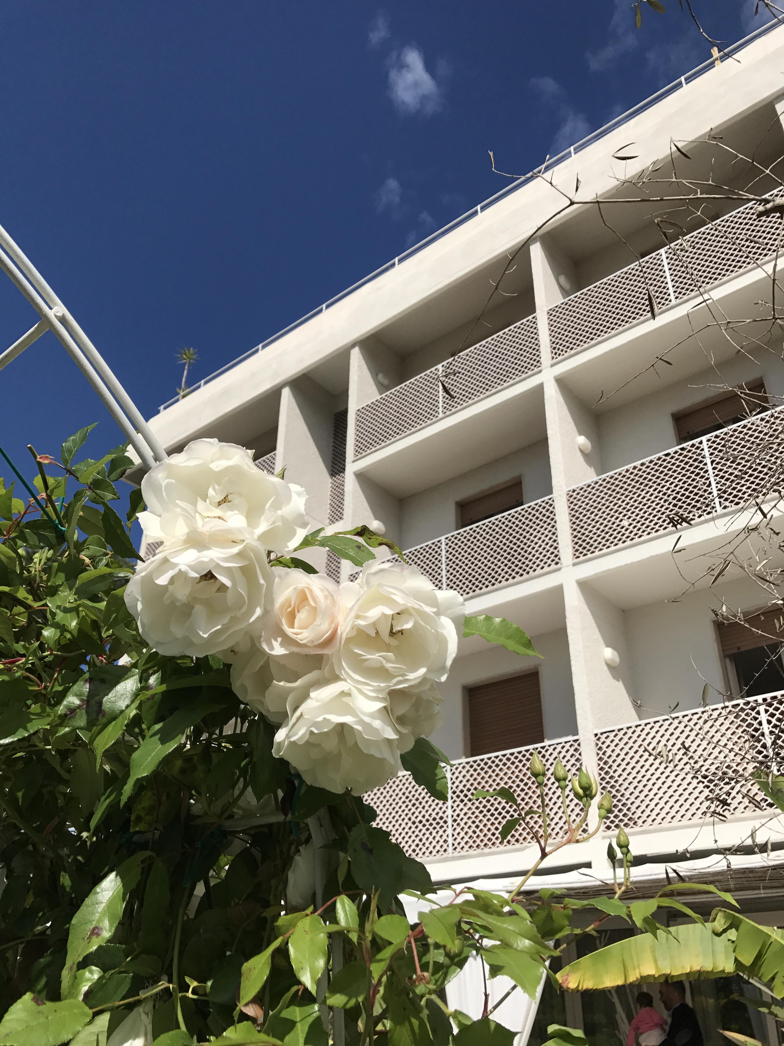 Hotel Bijou Forte dei Marmi